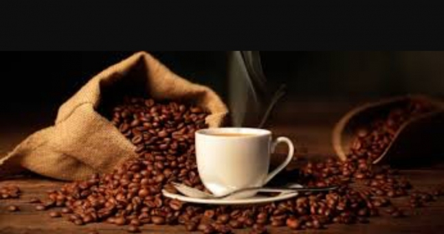 A professionalized coffee start up
